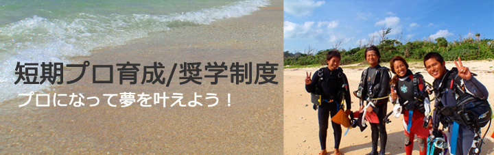 石垣島ダイビング短期プロ育成/奨学制度