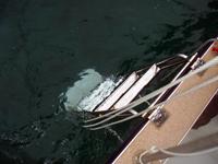 ダイビングボート5の左右ラダー