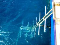 ダイビングボートwingの左右ラダー
