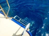 ダイビングボートwingの後ろラダー