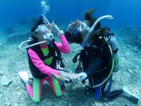 PADIオープンウォーターダイバー海洋実習