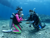 PADI海洋実習オープンウォーター1