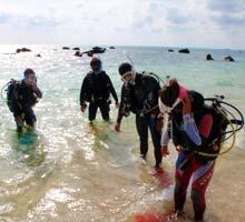 ダイビング短期プロビーチトレーニング