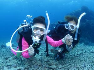石垣島体験ダイビングの思い出