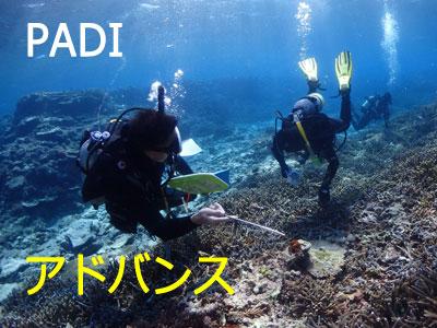 PADIアドバンス☆2016-17冬のキャンペーン