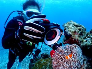 PADIアドバンス講習デジタル・アンダー・イメージングの海洋実習の風景