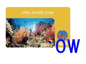 OWライセンスカード