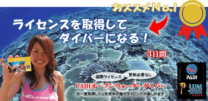 石垣島でダイビングライセンス取得をおすすめするバナー