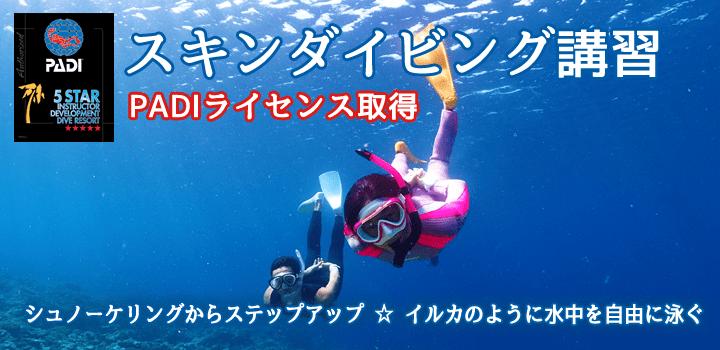 石垣島でスキンダイビングライセンス講習をおすすめするバナー