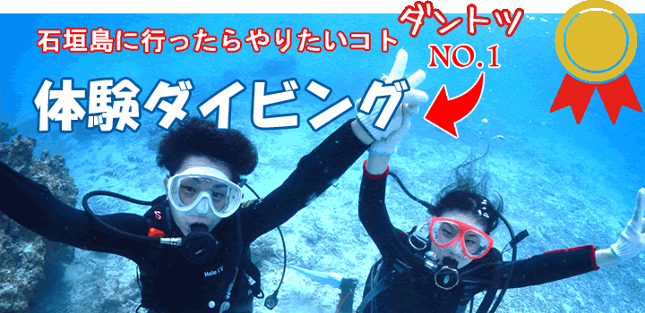 石垣島の体験ダイビングを楽しむ若い男性女性2名様