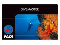 ダイビングのプロになる方法
