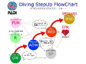 ダイビングステップアップフローチャート