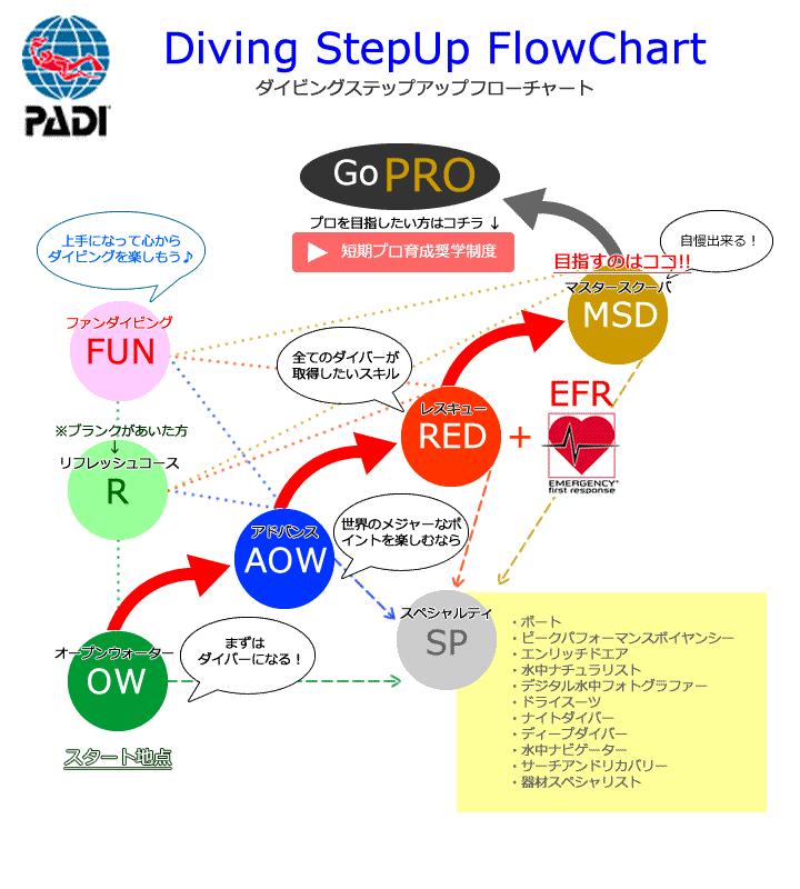 PADIステップアップフローチャート図