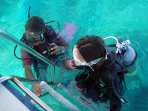 インストラクターとマンツーマンでダイビングをするダイバー