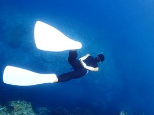 PADIスキンダイビング海洋実習オプションの様子
