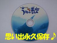 体験ダイビングの思い出DVD