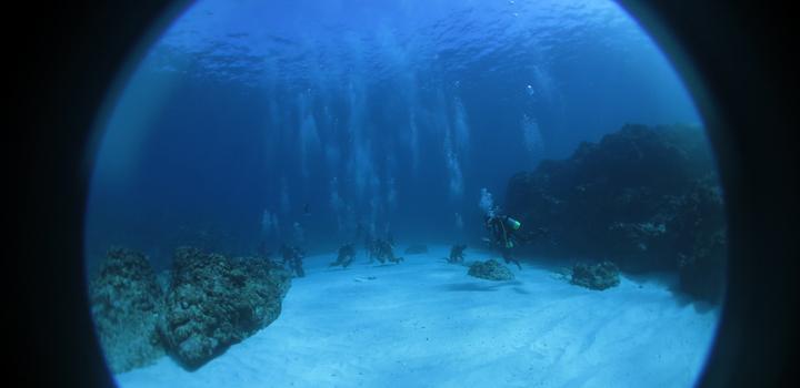 潜水艦の窓からのぞいたようなダイビングの世界の写真