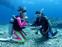 海中で呼吸の練習をする体験ダイバー